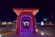청송사과축제'완전 대박'…35만여명 발길 이어지며 연일 북새통