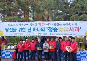 서울시민들, 청송사과에 혹하다.!